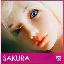 head_sakura2